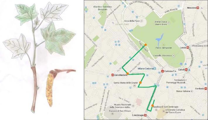 pedalata-botanica-17-maggio