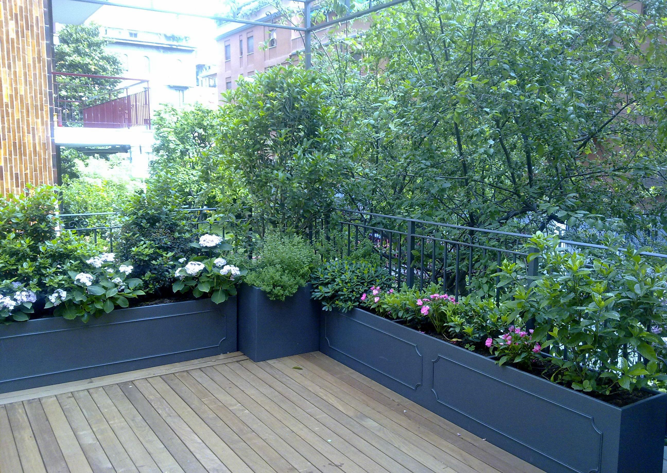 grandi vasche in acciaio verniciate con piante da ombra circondano ...